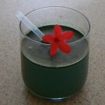 SPICAOSO: Cold Cacao Power Drink – Recipe for a raw spirulina drink