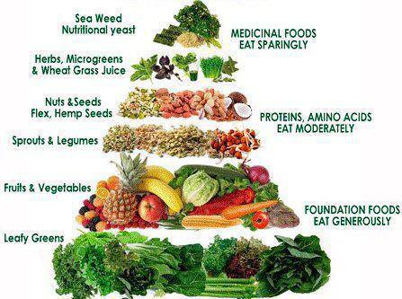Can You Eat Frozen Food On A Raw Diet