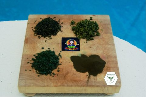 Her bhujia – New spirulina product